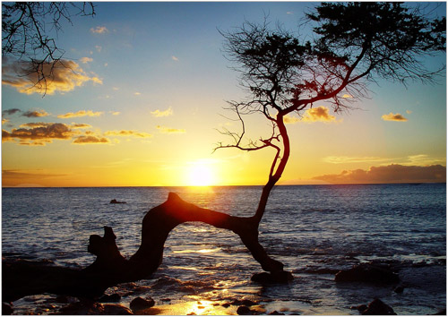 Pacchetto benessere 3 giorni Fiuggi Armonia, massaggio hawaiano lomi-lomi